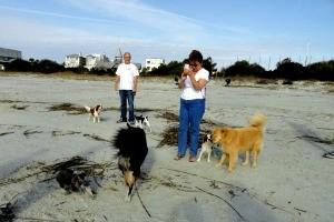 Pet Friendly Beach