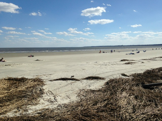 Beach View of Jekyll Island