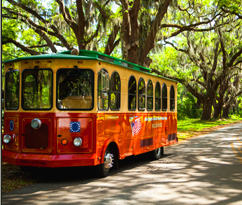 A Guided Tour on St Simons Island
